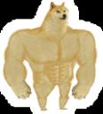 :strongdoge: